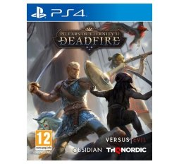 Slika izdelka: Pillars of Eternity II: Deadfire (PS4)